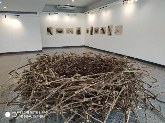 Medialuna: un nuevo proyecto para el arte cubano