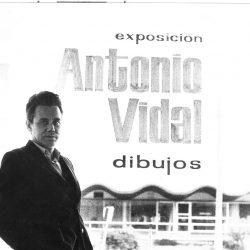 artista cubano Antonio Vidal (arte abstracto cubano)