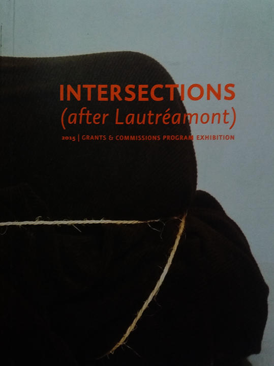 Intersections (after Lautréamont) 2015│Grants & Commissions Program Exhibition