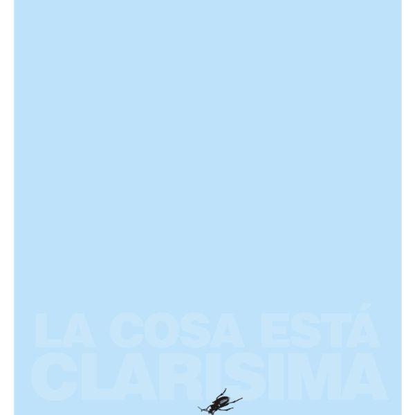 La cosa está clarísima. Impresión digital en tela. 100 x 70 cm. 2009