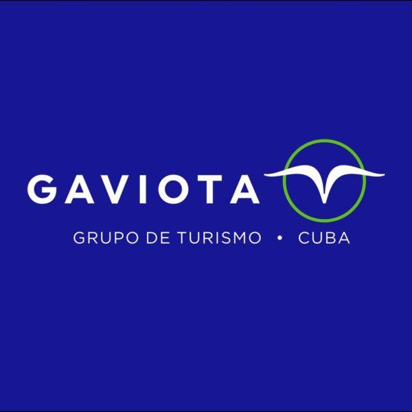 Logo de la Empresa Gaviota