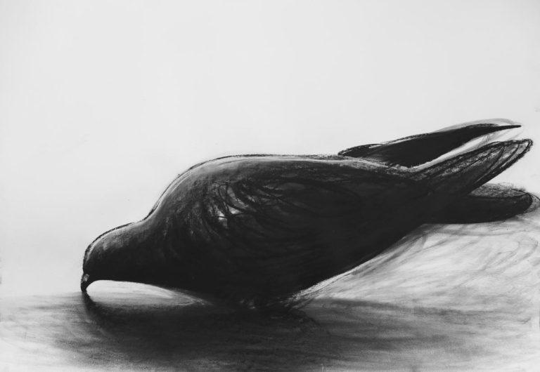 Llegada / 2019 / Carbón sobre cartulina / 70 x 100 cm
