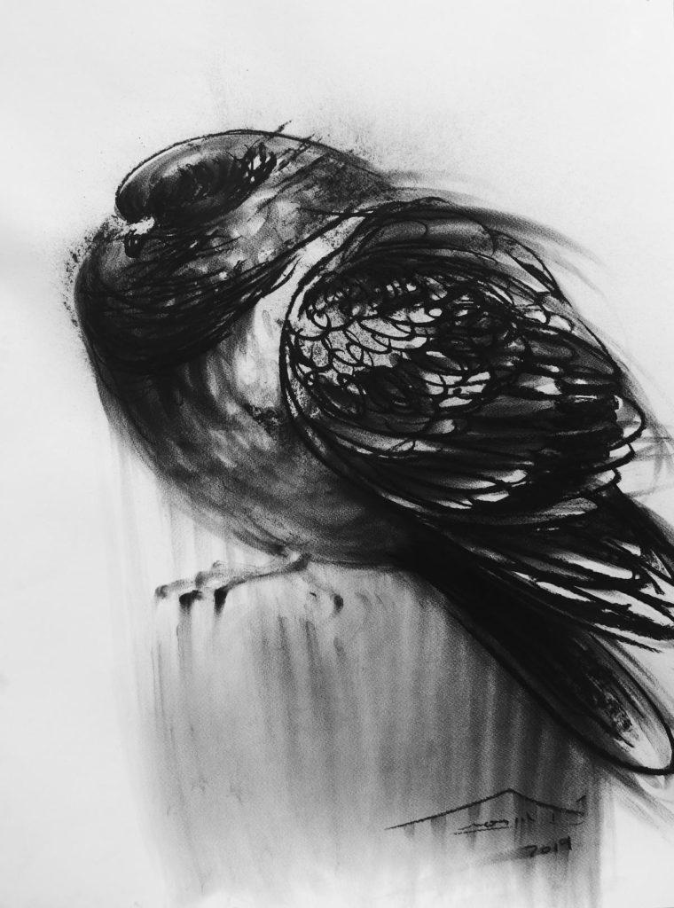 María Teresa / 2019 / Carbón sobre cartulina / 50 x 70 cm