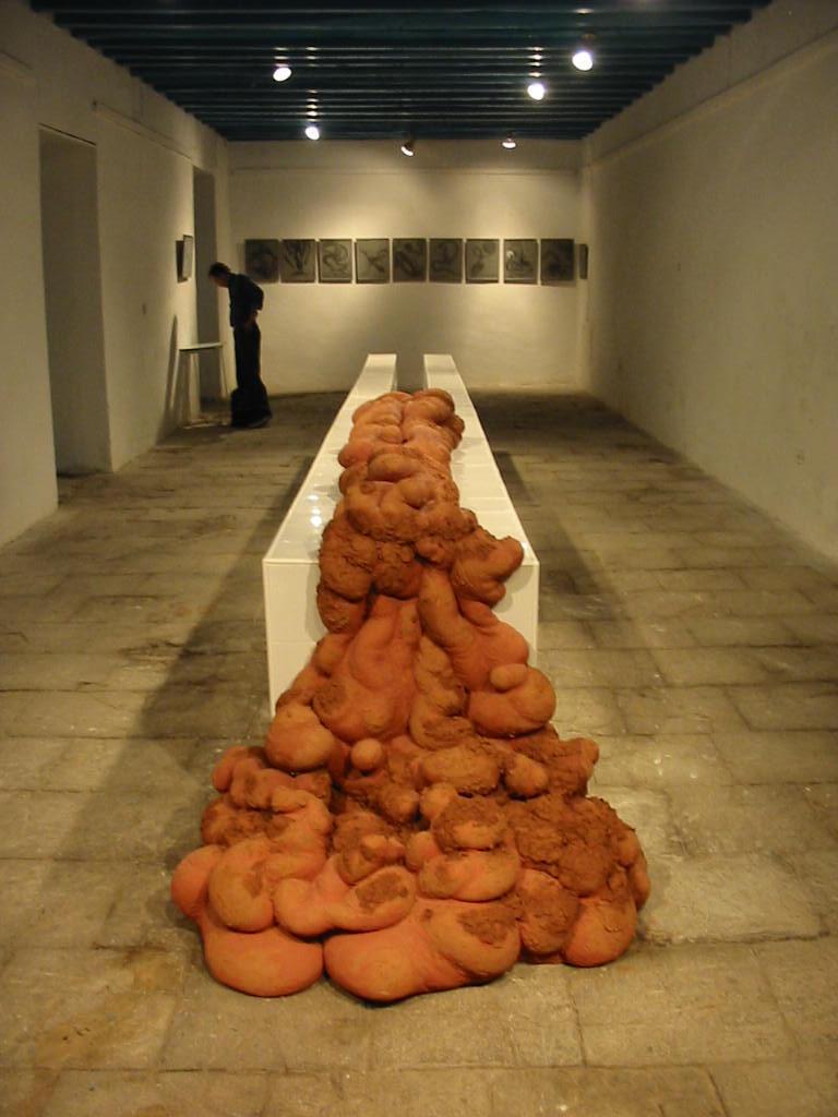 Teresa Sánchez. Expo In anima Vili, 2006.